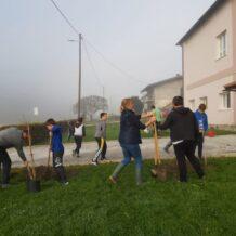 Zasadi drvo, ne budi panj: kod PŠ Lučelnica posađeno 14 sadnica drveća